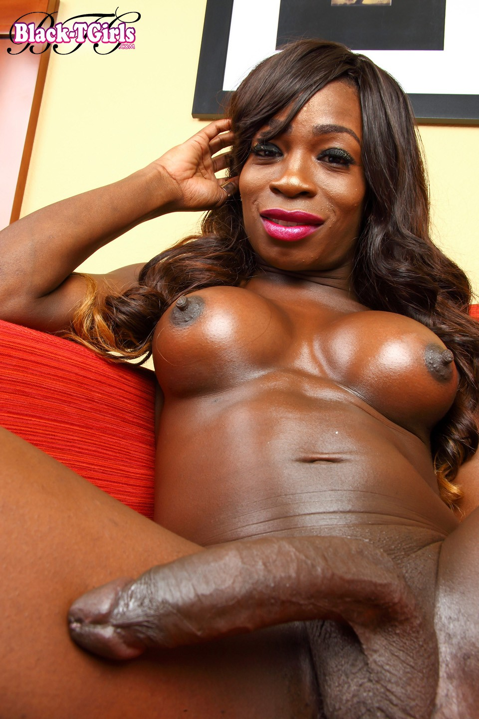 huge-black-shemale-pics