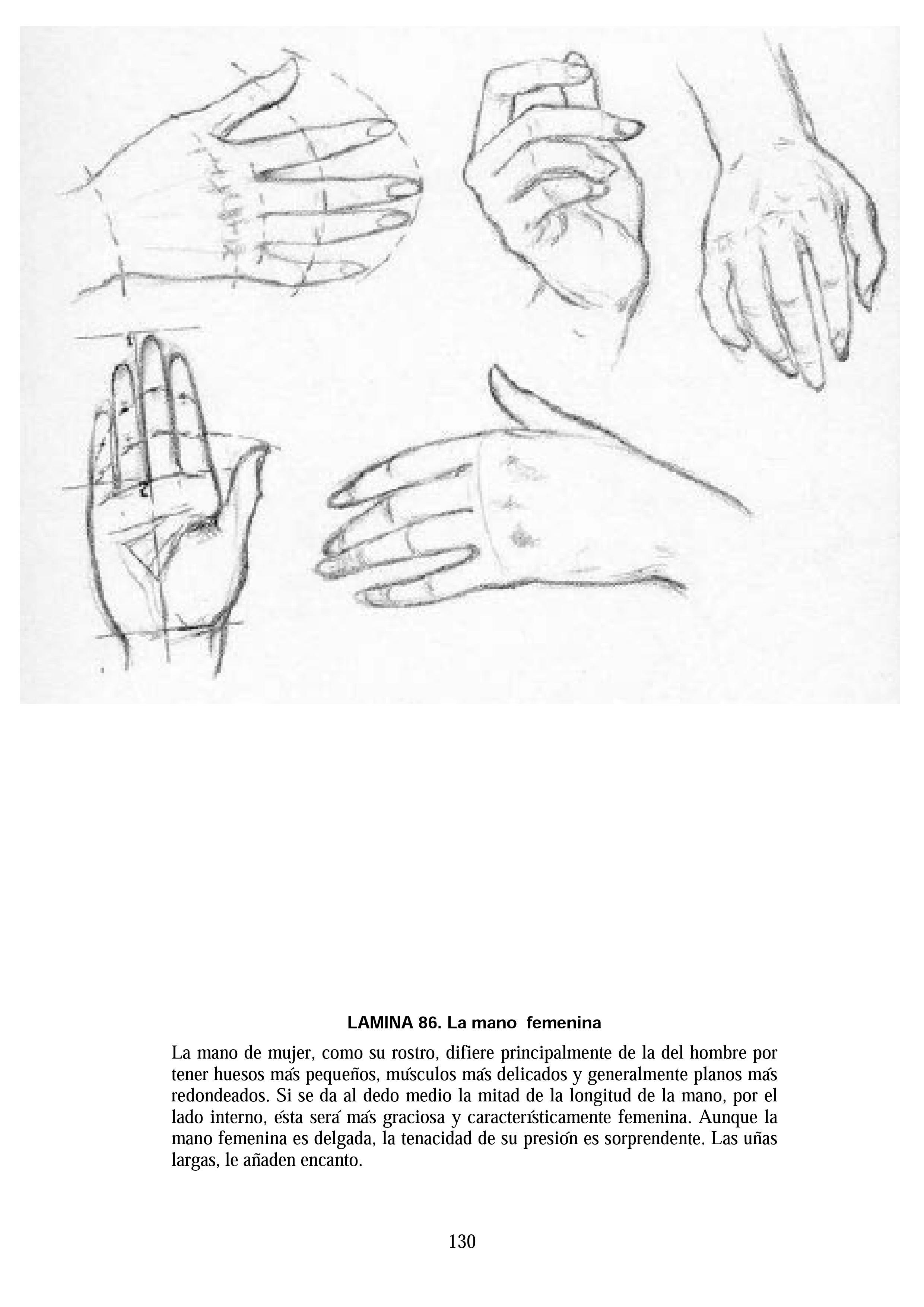 andrew loomis dibujo de cabeza y manos