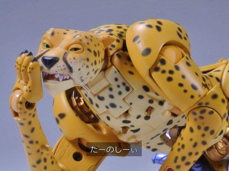 [Masterpiece] MP-34 Cheetor et MP-34S Shadow Panther (Beast Wars) - Page 2 U99Chtbh