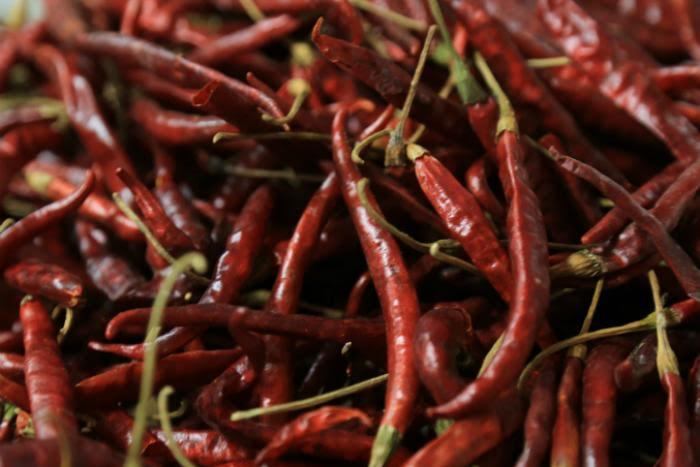 Jalisco recibirá a 60 cocineros para el Encuentro Regional de C
