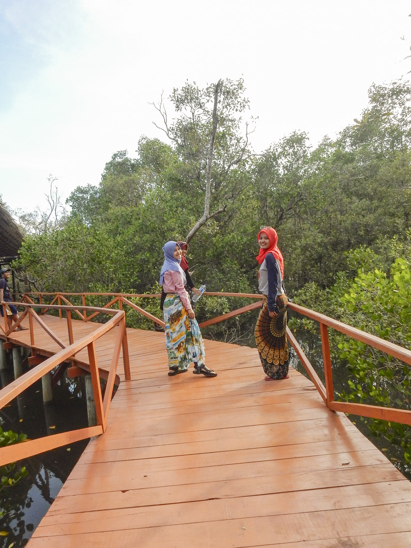 eksplore jembatan mangrove di batukaras