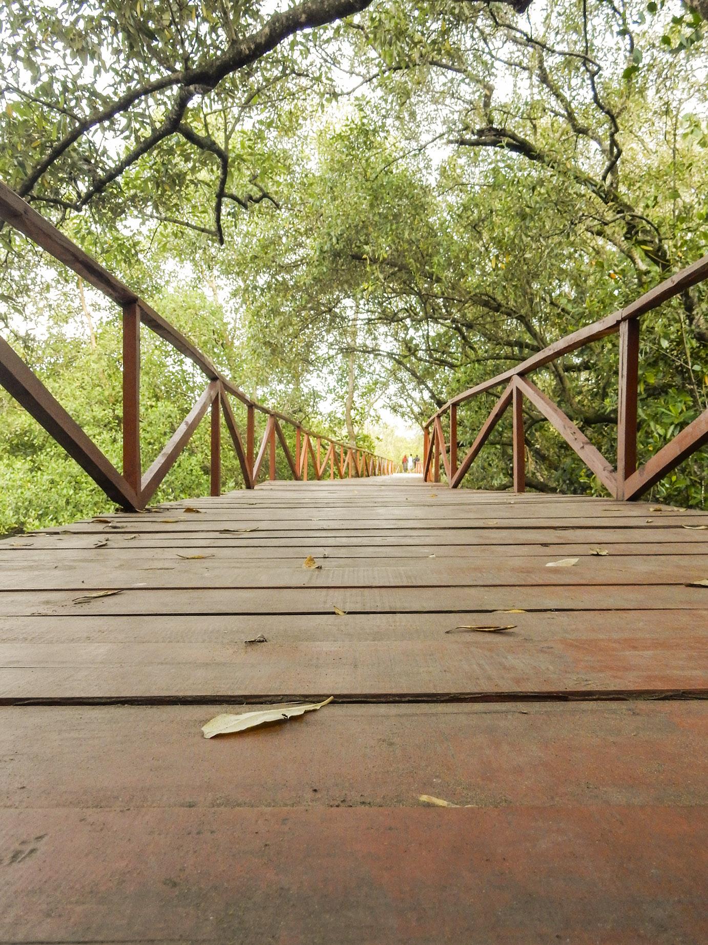 Selamat datang di mangrove bridge, batukaras