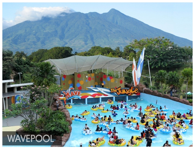 the jungle waterpark wave pool