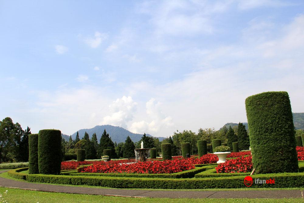 Prewedding Dengan Pemandangan Eksotis di Taman Bunga Nusantara