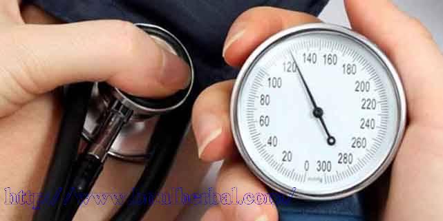 Testimoni QnC Jelly Gamat Atasi Penyakit Darah Tinggi