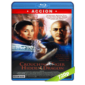 El Tigre Y El Dragon (2000) BRRip 720p Audio Trial Latino-Castellano-Chino 5.1
