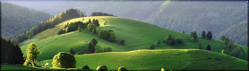 De Heuvels
