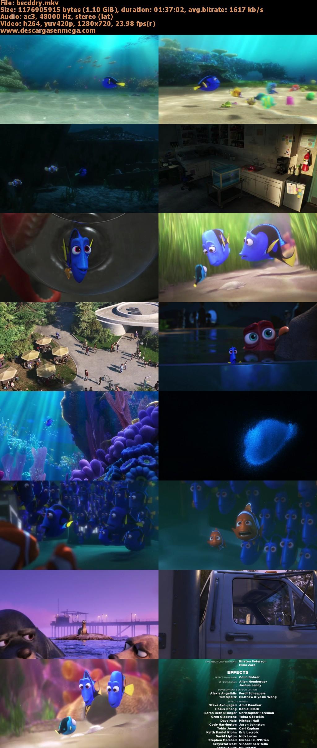 Finding Nemo Google Drive - 0425