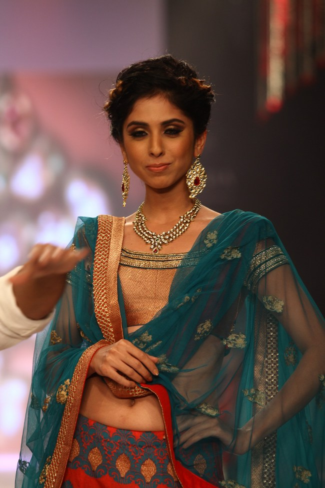 Bollywood celebs On the Ramp IIJW 2013 15 images Ackw4VOL