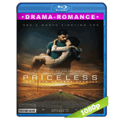 Priceless (2016) BRRip Full 1080p Audio Ingles Subtitulada 5.1