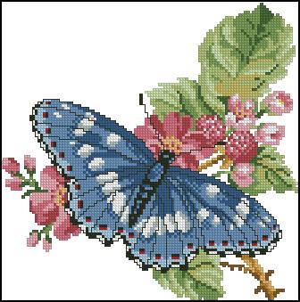 Вышивка голубой бабочки
