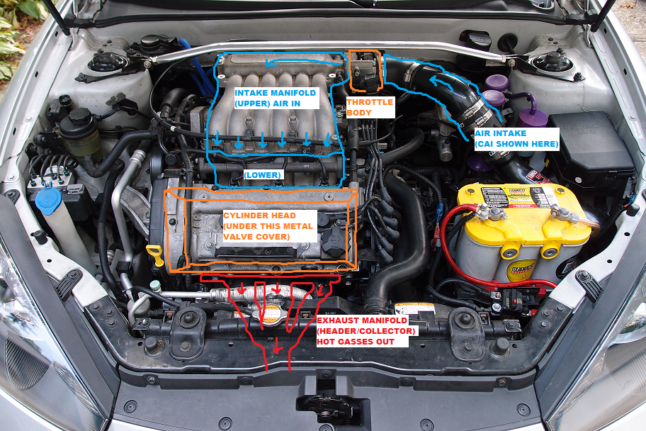 this is a typical v6 engine bay so the i4 will look a bit different even  though the parts are the same  the v6 has two cylinder heads (aka
