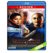El Tigre Y El Dragon (2000) BRRip Full 1080p Audio Trial Latino-Castellano-Chino 5.1