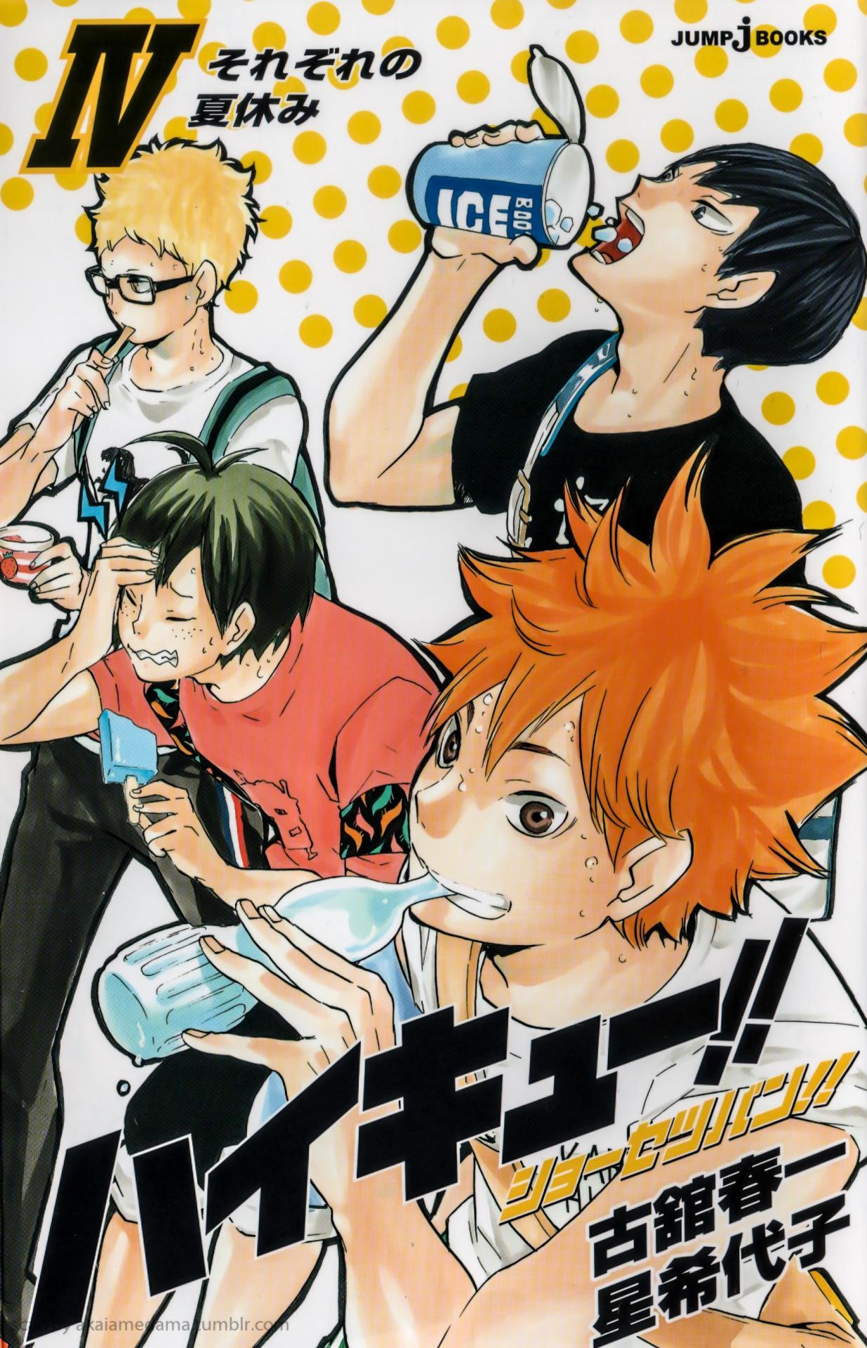 Haikyū!! Novel Edition!!