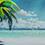 Arcanus Island | Hermana | OYmGpdwT