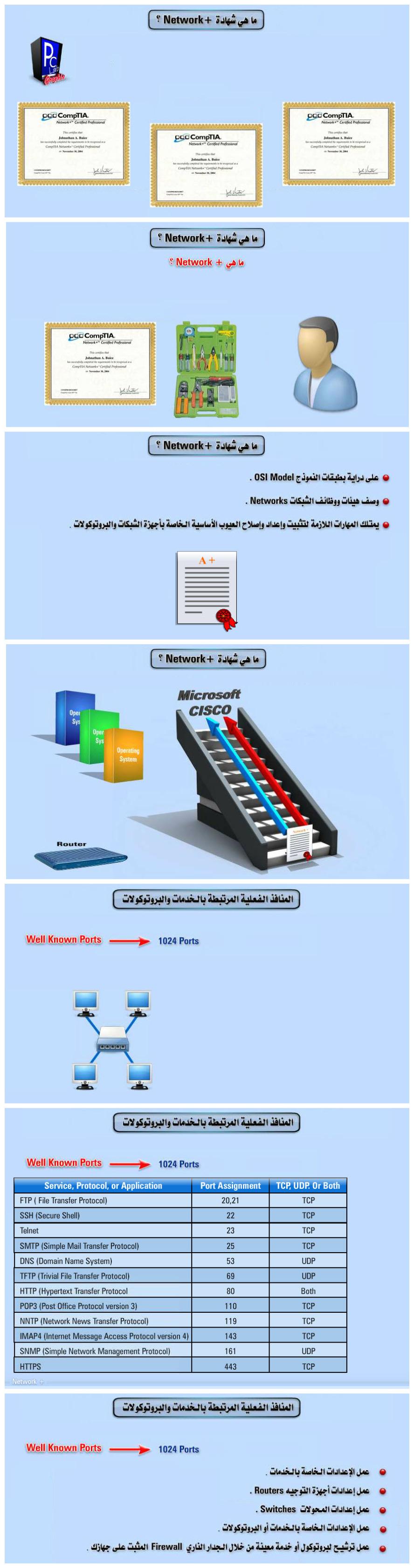 2 arabp2p.net