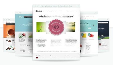 80 шаблонов для вашего Wordpress сайта от Elegant Themes