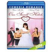 Un Encuentro Prometedor (2013) BRRip 720p Audio Castellano 5.1
