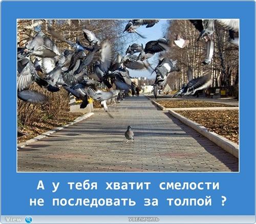 http://i.imgbox.com/qxpeFQJl.jpg