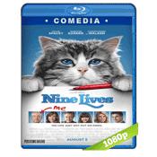 Mi Papa Es Un Gato (2016) BRRip Full 1080p Audio Ingles Subtitulada 5.1