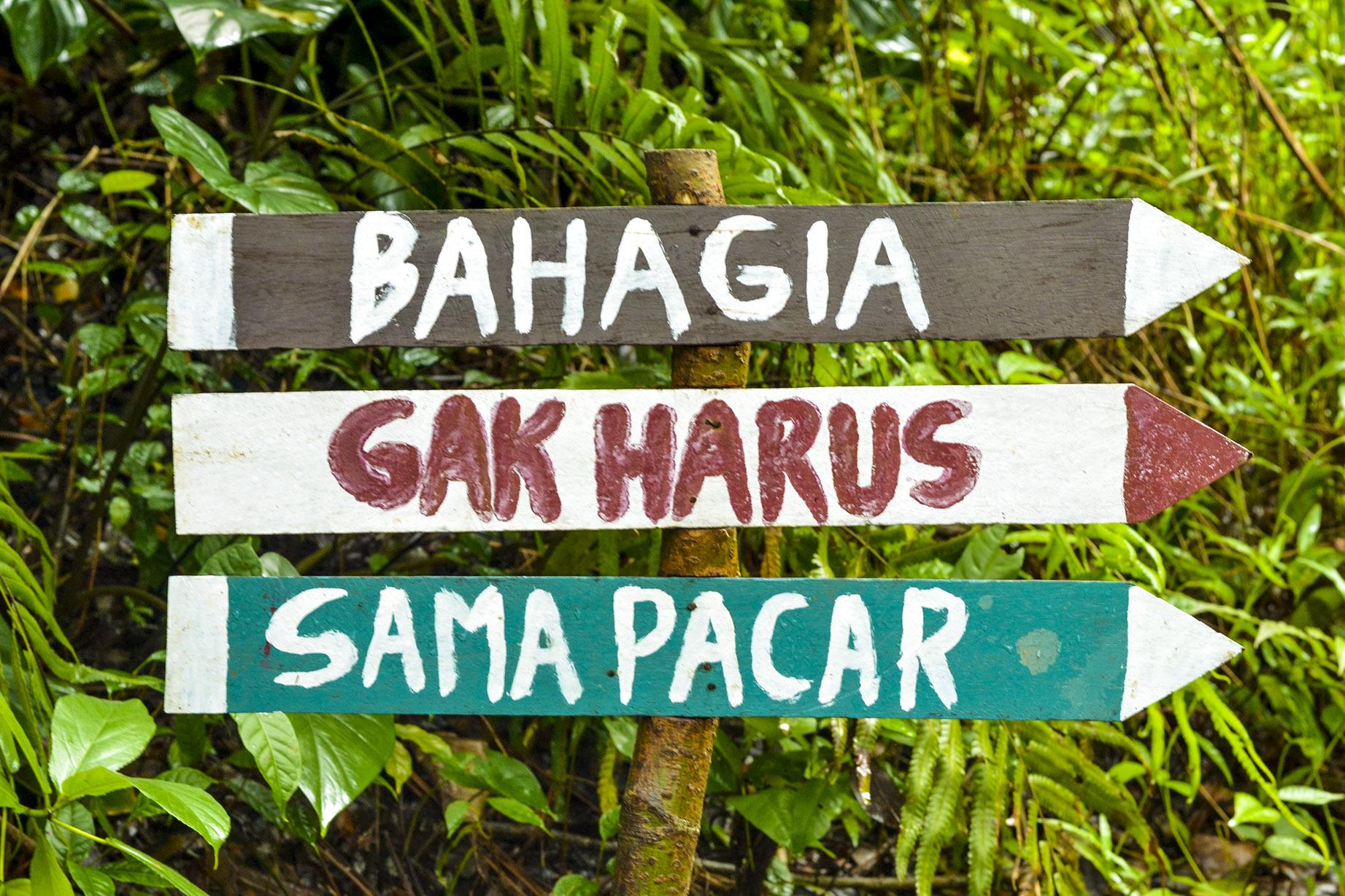 rute jalan menuju gunung selok adipala