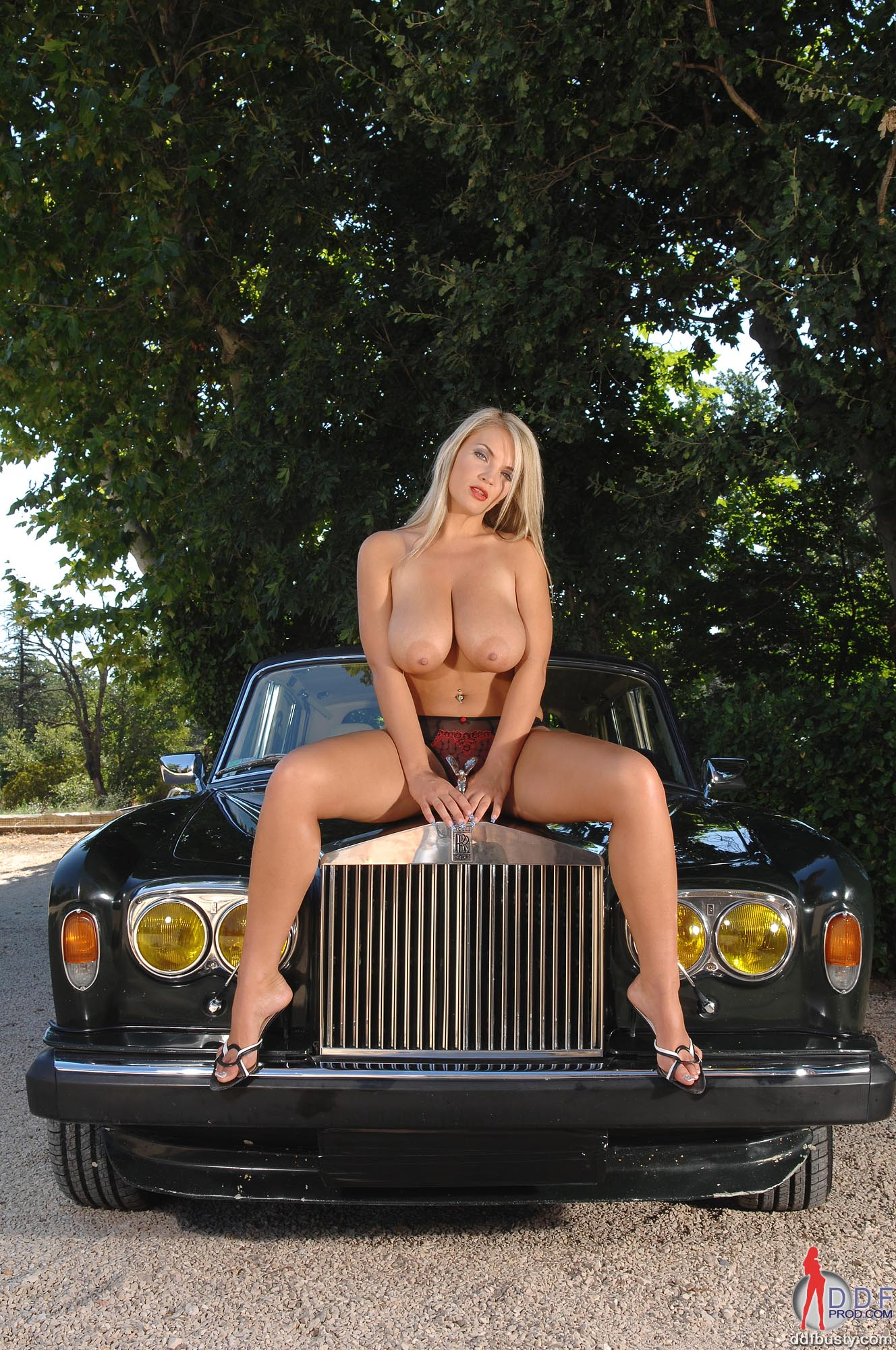 Royce Lingerie - Sujetador básico - para mujer: