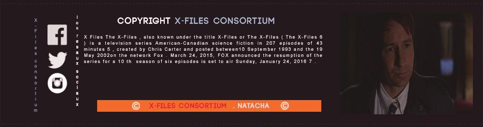 Épisode 1 : Le Complot Épisode 20 : La Fin TNx8FE93