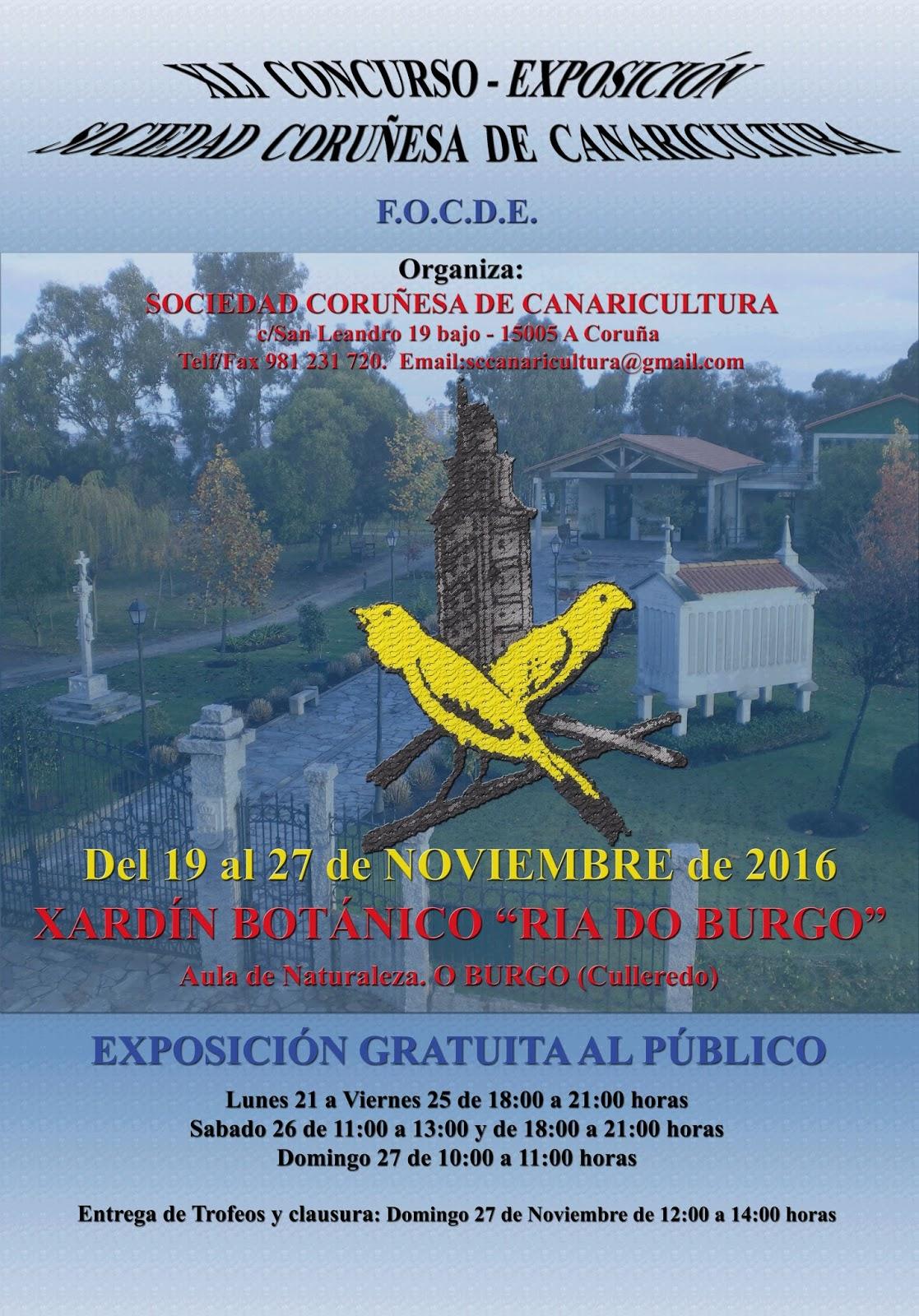 Regional de Focde (A Coruña) EJt1hiUs