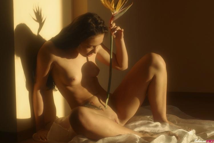 эротическое фото предпросмотр