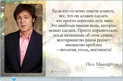 http://i.imgbox.com/lRjSsIFu.jpg