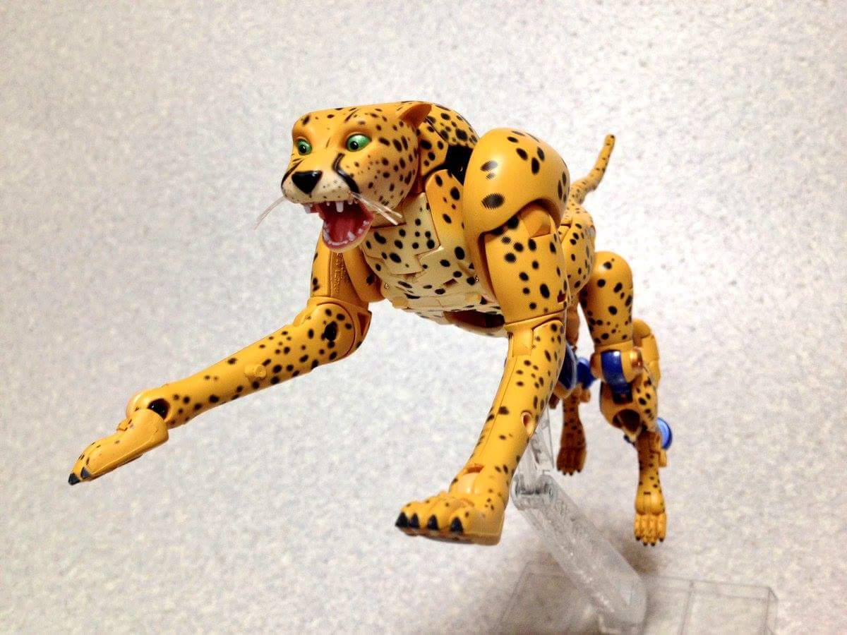 [Masterpiece] MP-34 Cheetor et MP-34S Shadow Panther (Beast Wars) - Page 2 Wc4dpKgH