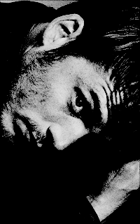 Alfie Fawkes
