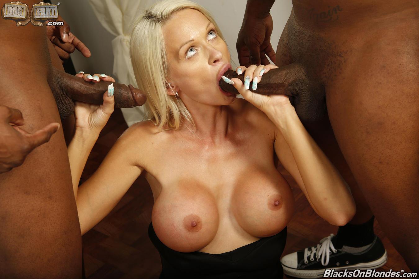 Cindy shine tries hardcore group interracial sex