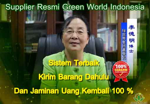 Supplier Green World Resmi