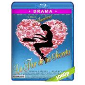 La Flor De Mi Secreto (1995) BRRip Full 1080p Audio Castellano 5.1