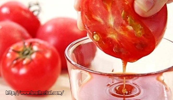 Manfaat Buah Tomat Mampu Mengusir Kolesterol Jahat