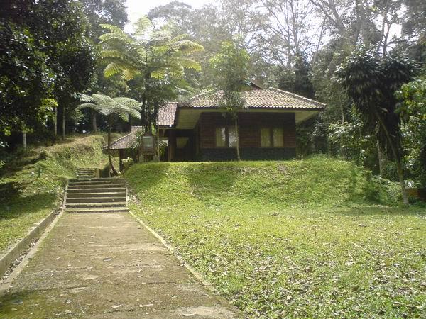 Wisata Bogor: Pusat Pendidikan Konservasi Alam Bodogol