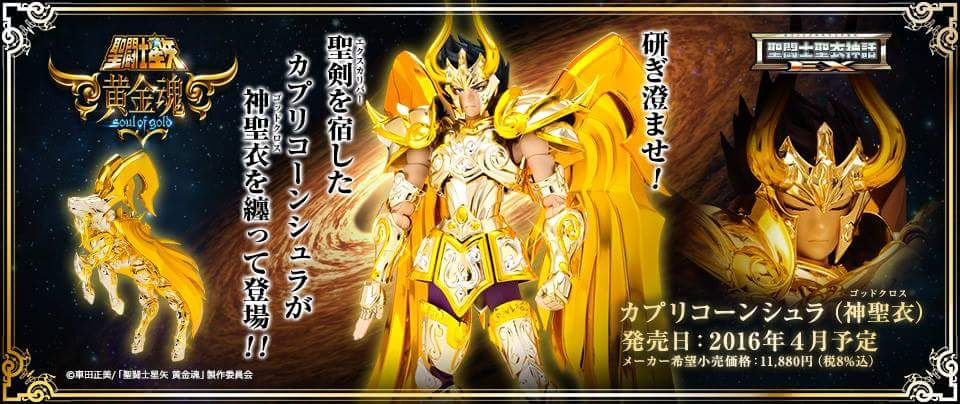 [Myth Cloth EX] Soul of Gold - Capricorn Shura Gold Cloth MBvC7ajU
