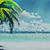 Arcanus Island | Hermana | BrlriM6g