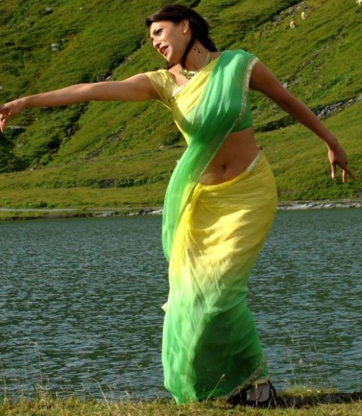 Kajal - Kajal Agarwal beautiful stills in saree Acyau7c0