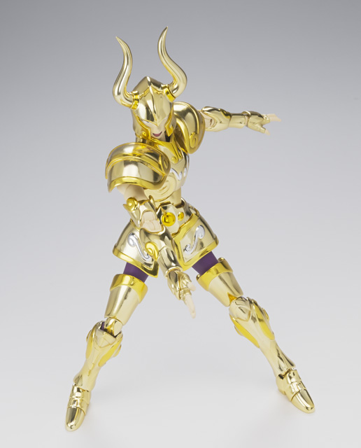 [Luglio 2013] Saint Cloth Myth EX Capricorn Shura AdrG11Mg