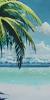 Arcanus Island | Hermana | A1SGXVnE