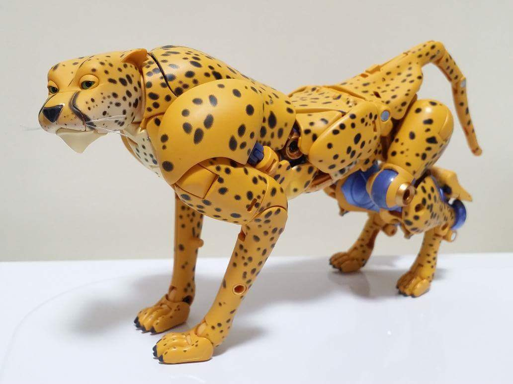 [Masterpiece] MP-34 Cheetor et MP-34S Shadow Panther (Beast Wars) - Page 2 GidHOiLb