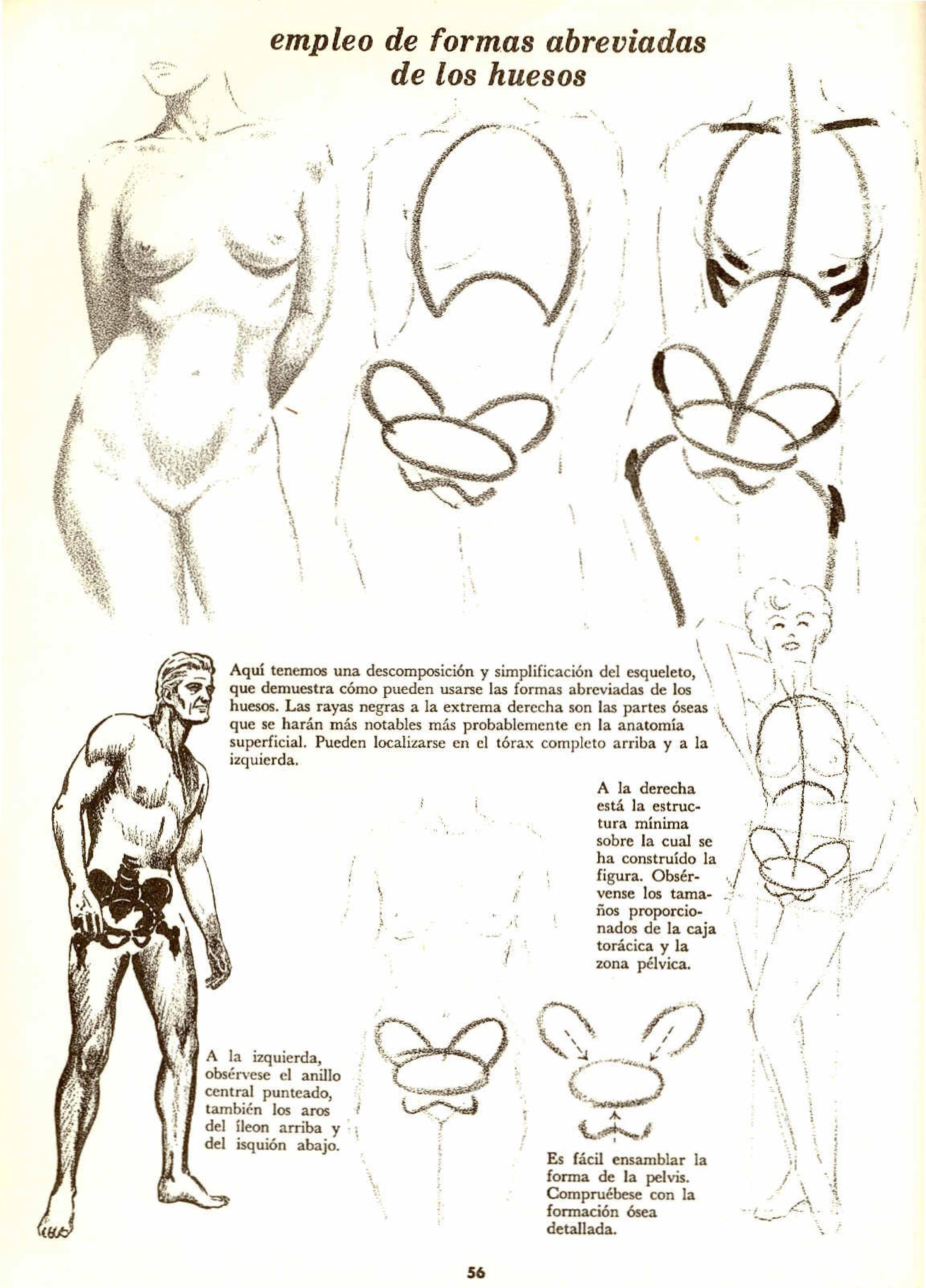 Mis libros de dibujo parte 1