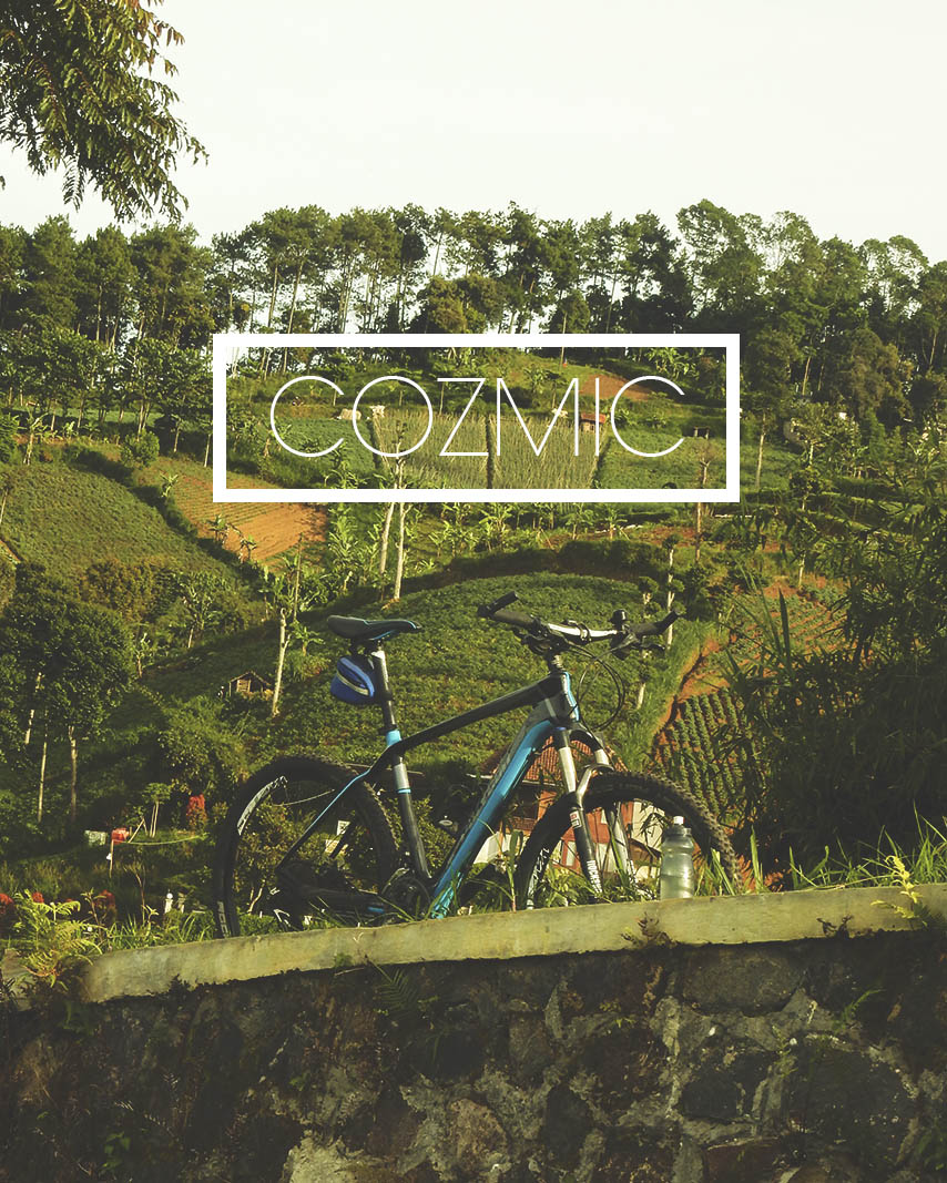Berkenalan dengan Polygon Cozmic CXR 2.0