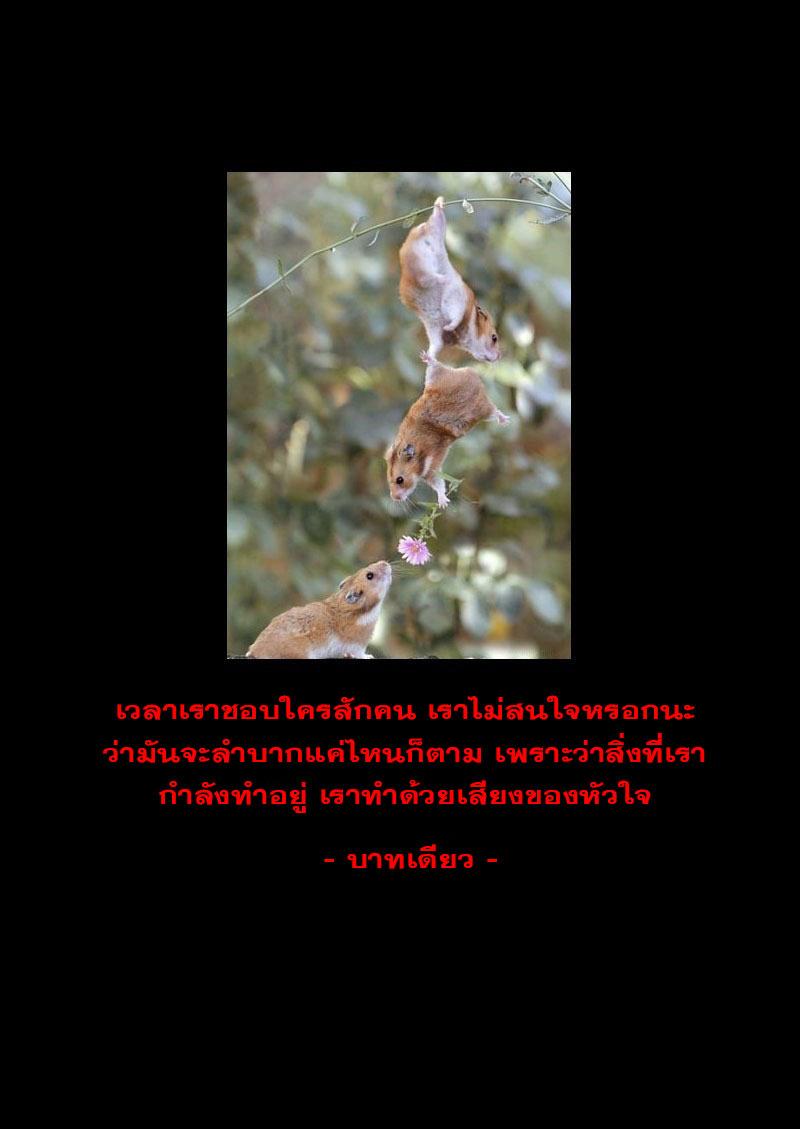 อ่านการ์ตูน Tiger X Crane 17 ภาพที่ 17