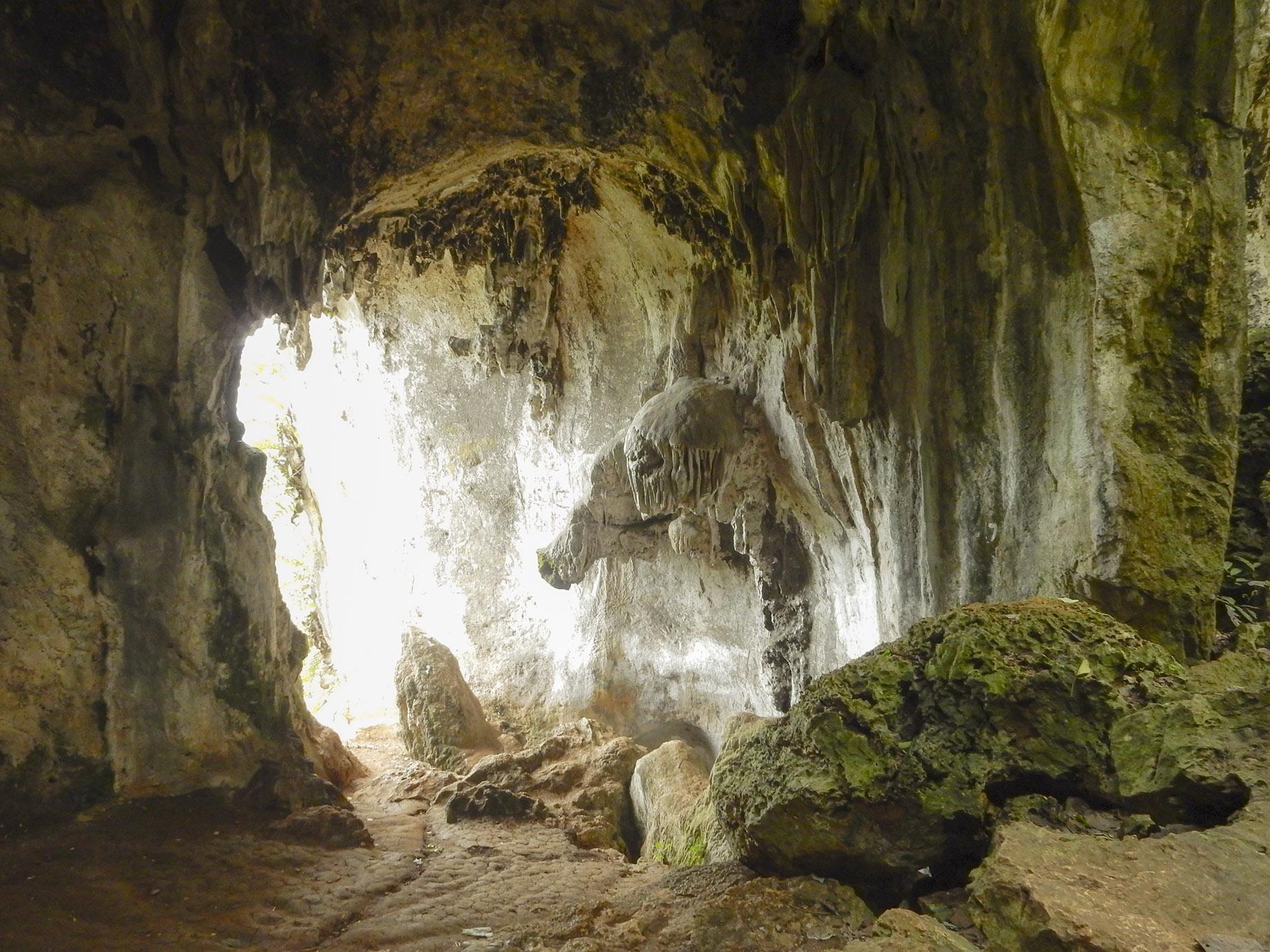 fosil manusia purba di goa pawon
