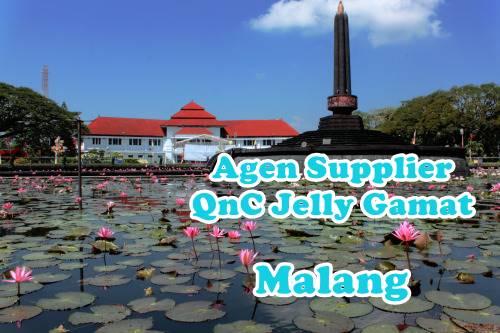 Agen QnC Jelly Gamat Malang