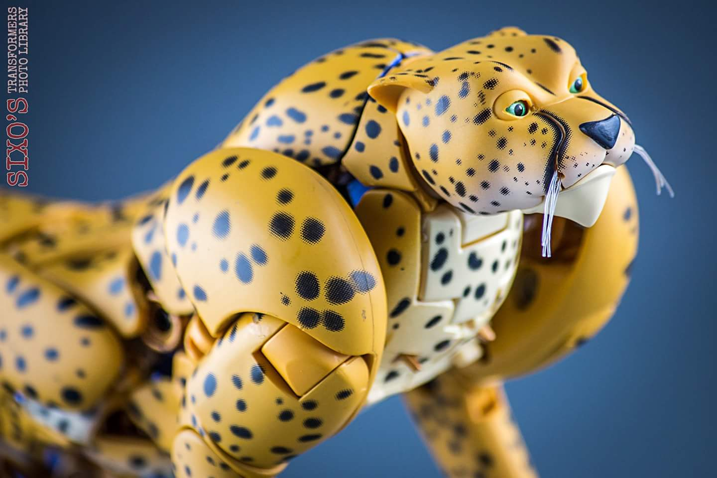 [Masterpiece] MP-34 Cheetor et MP-34S Shadow Panther (Beast Wars) - Page 2 VqHKdMN9