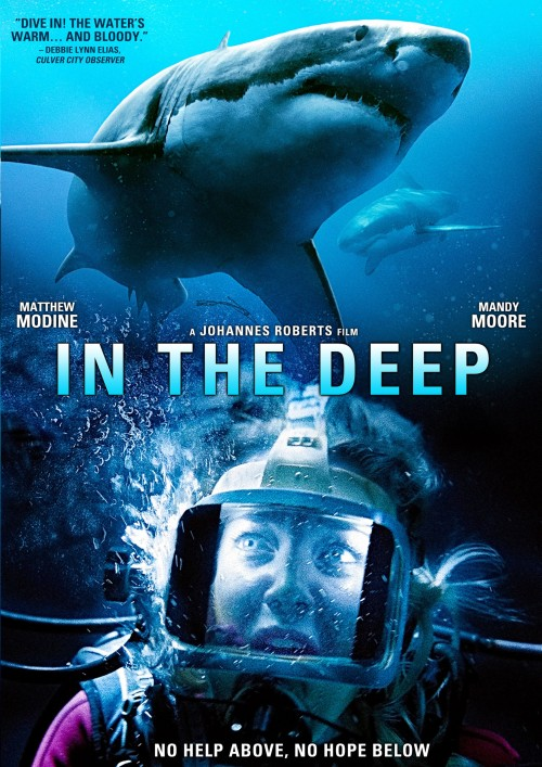 47 Meters Down / In the Deep (2016)  PLSUBBED.DVDRip.Xvid.AC3-MX / Napisy PL wtopione
